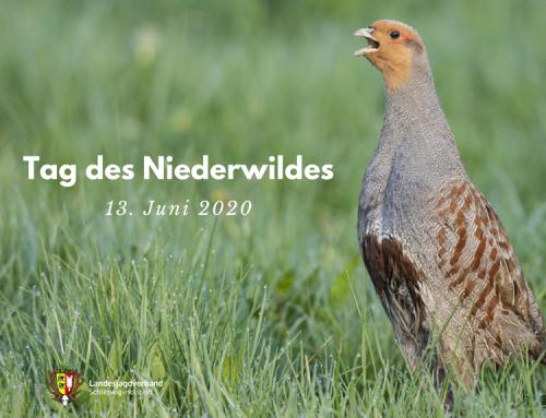 """Niederwildhege: LJV veranstaltet """"Tag des Niederwildes"""""""