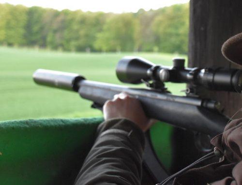 Warum eine Verschärfung des Waffenrechts sinnlos ist