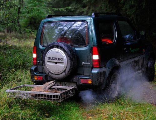 Jagdreisen in Zeiten der ASP: Hinweise und Empfehlungen
