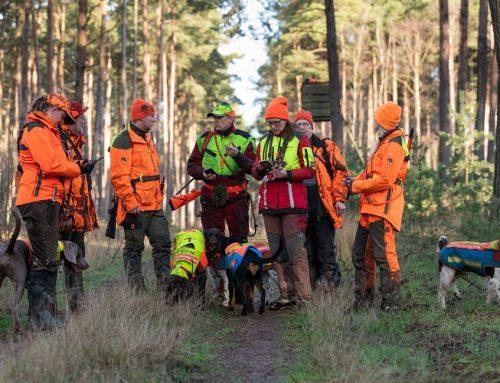 Experiment: Landesregierung fordert eine intensive Bejagung der Wildschweine doch Lübeck geht den umgekehrten Weg