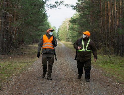 Jagd und Corona: Was ist erlaubt?
