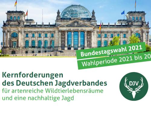 Bundestagswahl 2021: Wahlprüfsteine und Forderungen